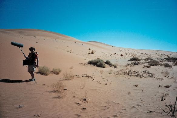 Xavi Desert